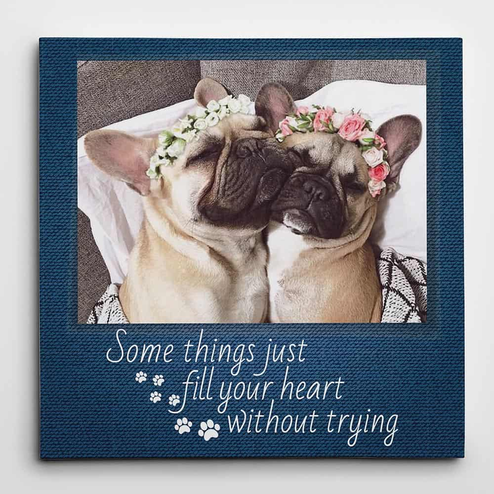 somethings just fill your heart without trying dog custom photo canvas