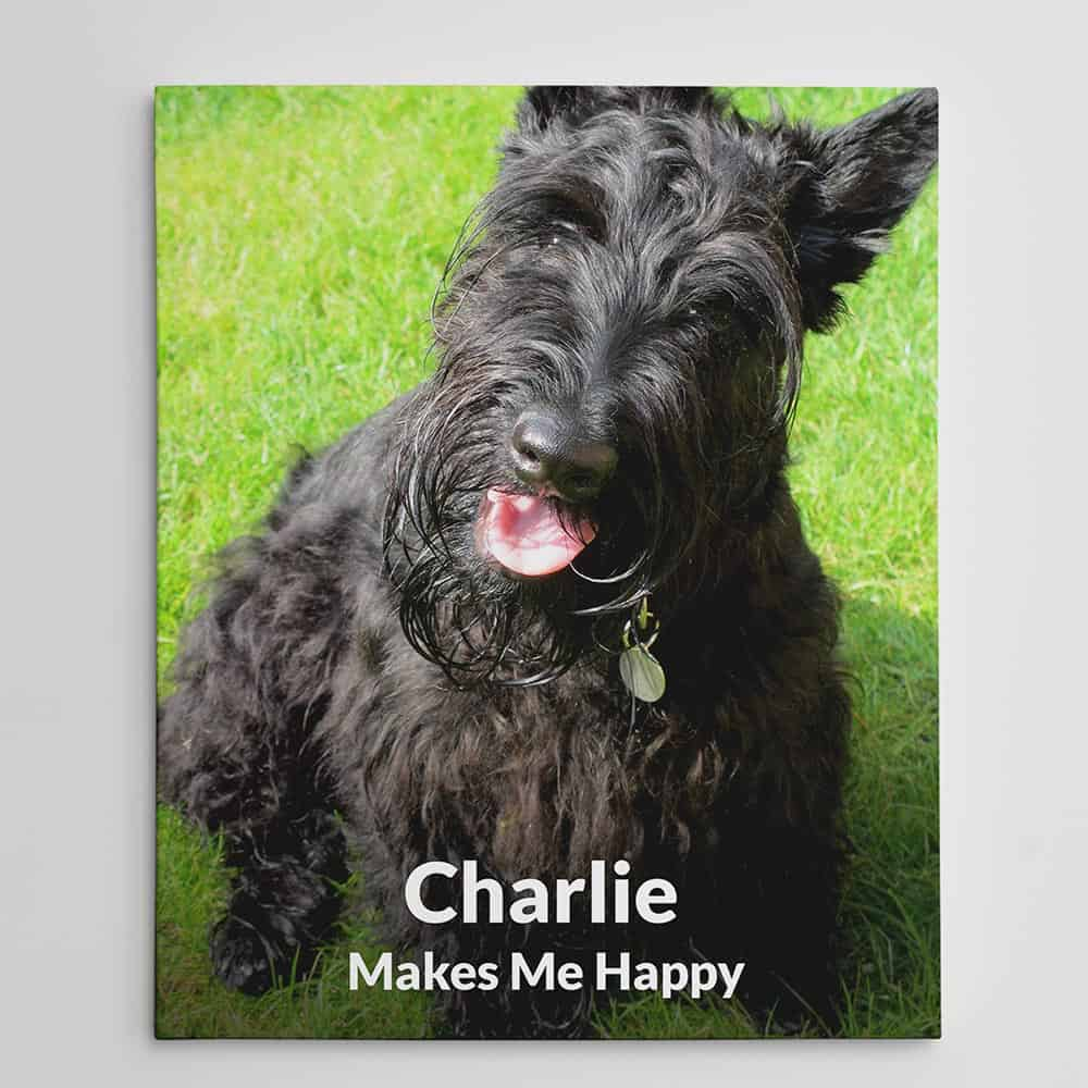 Dogs Make Me Happy Custom Photo Canvas