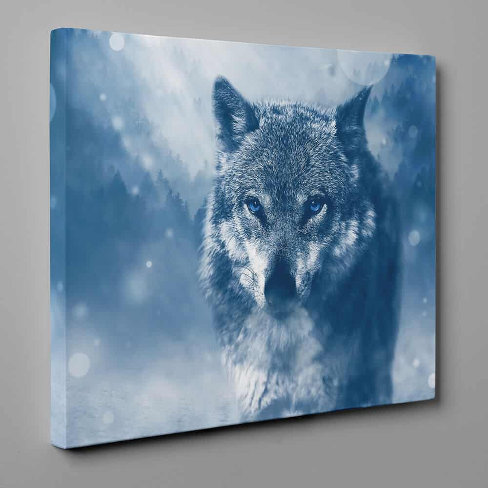 Gray Wolf With Bright Blue Eyes - Close Up Canvas Wall Art