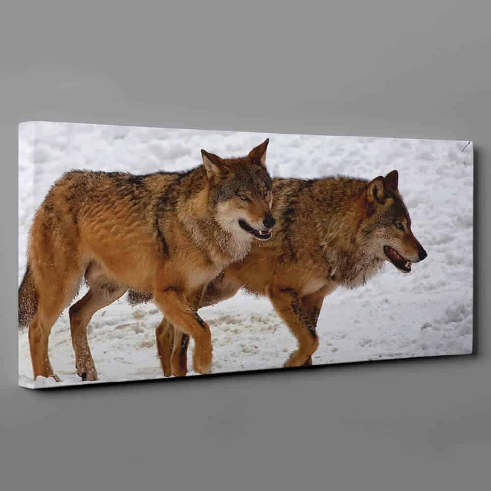 2 Wolves Walking In The Winter Snow Canvas Wall Art