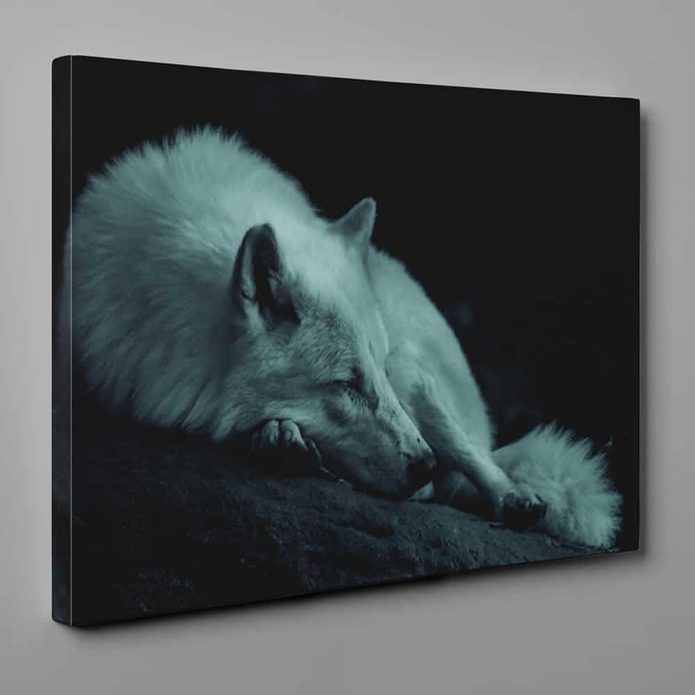 Wolf Sleeping In The Dark Canvas Wall Art