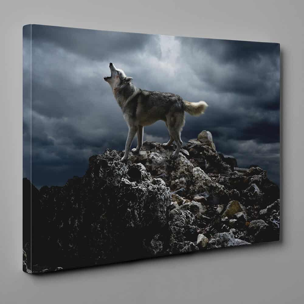 Wolf Howling On The Cliff Canvas Wall Art