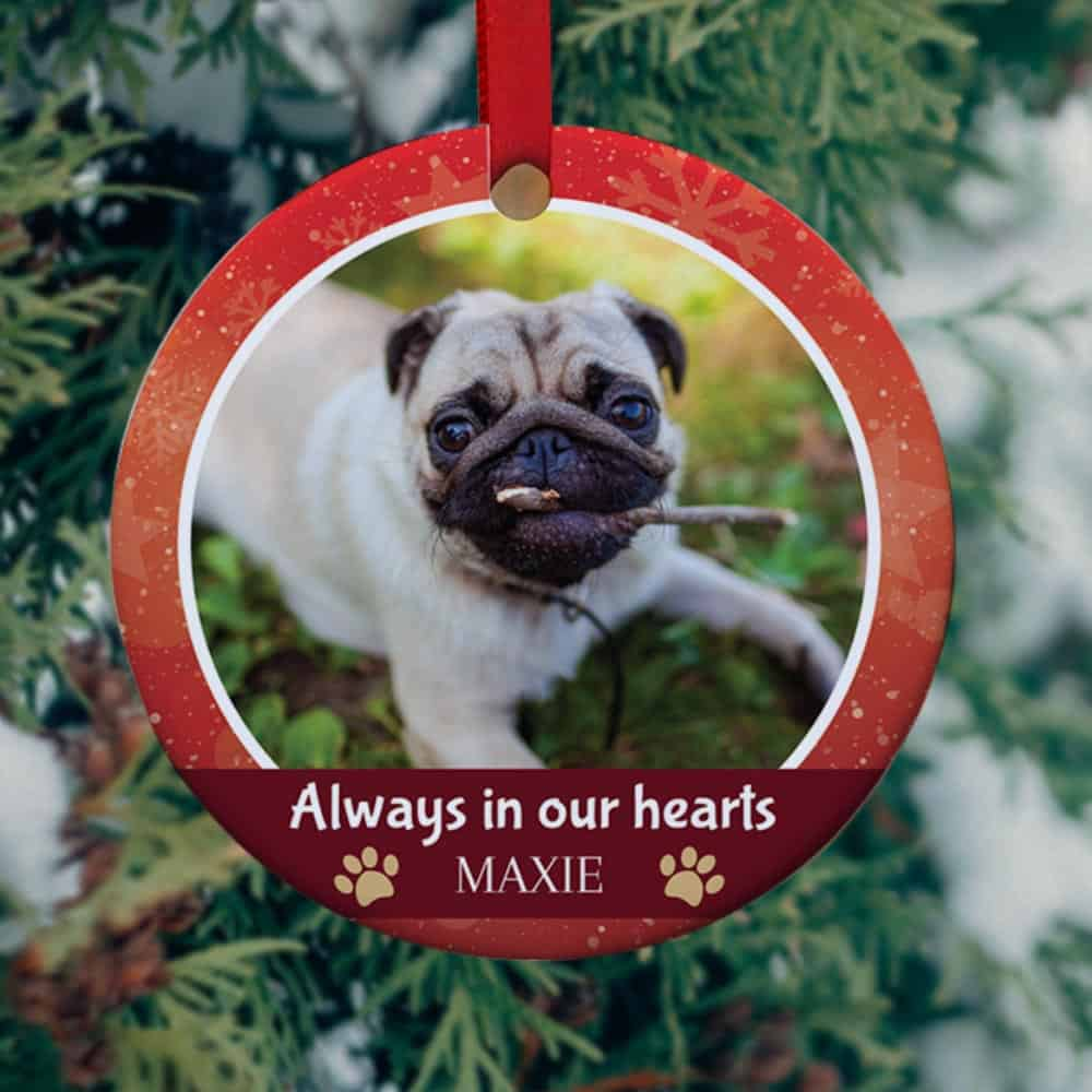 always in our hearts christmas ornament with pet photo - christmas gift idea for pet lovers