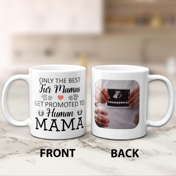 Only The Best Fur Mamas Get Promoted To Human Mama Mug